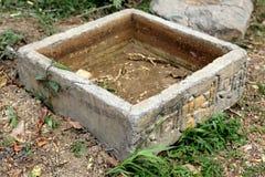 Tanque de água cimentado para o gado Imagem de Stock