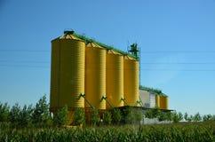 Tanques amarelos da grão Fotografia de Stock