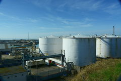 Tanques de armazenamento do óleo branco Foto de Stock