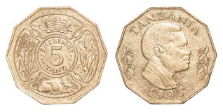 100-Tansania-Schillings-Münze Lizenzfreies Stockbild
