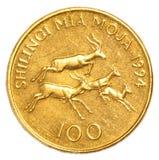 100-Tansania-Schillings-Münze Lizenzfreie Stockfotos