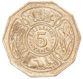 100-Tansania-Schillings-Münze Lizenzfreie Stockbilder