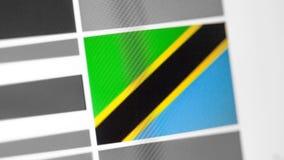 Tansania-Staatsflagge des Landes Tansania-Flagge auf der Anzeige, ein digitaler Wässerungseffekt stockfotos