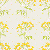 Tansy flowers pattern Stock Images