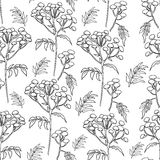 Tansy flowers pattern Stock Photo