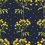 Tansy flowers pattern Royalty Free Stock Image