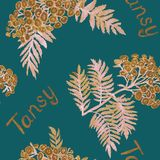Tansy Tanacetum vulgare, common tansy, bitter buttons, cow bitter, golden buttons stem with flowers and leaves, seamless pattern