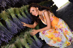 Tant de bouquets de lavande ! photos libres de droits