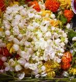 Tant de fleurs colorées Images libres de droits
