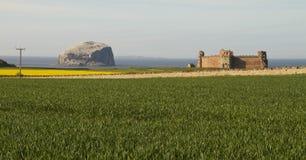 Tantallon城堡和低音岩石 免版税库存图片