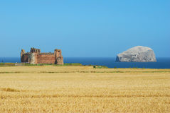 Tantallon castle and Bass Rock Stock Images