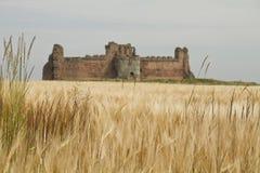Tantallon slott som inramas av fält Arkivfoto