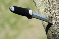 Tanto kniv som klibbas i träd Arkivfoto