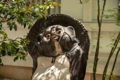 Tanuki, raccon狗是在日文的一个普遍的民间传说字符 库存照片