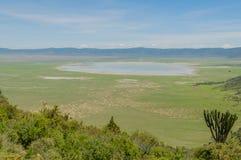 Tanzânia - área da conservação de Ngorongoro Imagem de Stock Royalty Free