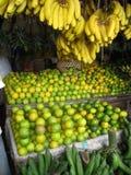 tanzânia Fotografia de Stock