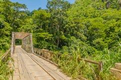 Tanzânia - reserva do jogo de Selous fotos de stock