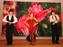 Tanz Carmen führte exotische Tanzzahl der Nationaltanz in der spanischen Art durch die Ensembletänzer von lateinamerikanischen Tä Stockbilder