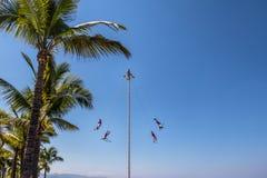 Tanz des Papantla Flyers Voladores de Papantla - des Puerto Vallarta, Jalisco, Mexiko lizenzfreie stockbilder
