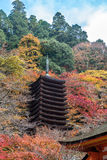 Tanzan寺庙的塔在秋天,奈良县,日本 库存照片