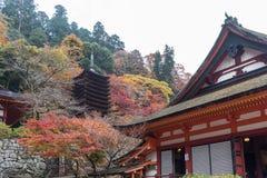 Tanzan寺庙的塔在秋天,奈良县,日本 免版税库存照片
