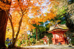 Tanzan寺庙 图库摄影