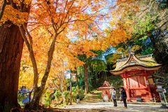 Tanzan寺庙 免版税库存照片