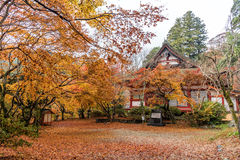 Tanzan Shrine in autumn, Nara Prefecture, Japan Royalty Free Stock Image