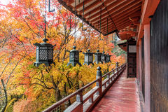 Tanzan Shrine in autumn, Nara Prefecture, Japan Royalty Free Stock Images