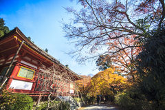 Tanzan Shrine at fall for adv or others purpose use Royalty Free Stock Image
