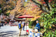 Tanzan Shrine at fall for adv or others purpose use Stock Image