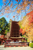 Tanzan Shrine Royalty Free Stock Photos