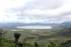 Tanzania ängar med berg Royaltyfri Foto