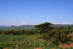 Tanzania Royalty Free Stock Photo