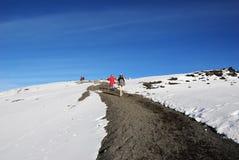 Climbers on top of the Kilimanjaro mountain. Tanzania, Stock Photo