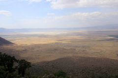 Tanzania, Afryka, przyroda Fotografia Royalty Free