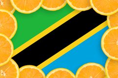 Tanzania flag in fresh citrus fruit slices frame stock images