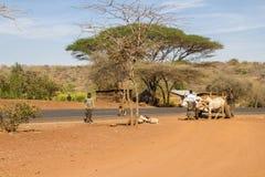 Tanzania kraju życie Fotografia Stock