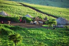 Tanzania, massai village. Africa. Tanzania, Africa. Traditional masai tribe village on the green hills shown at twilight stock image