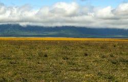 Tanzania meadows Royalty Free Stock Photo