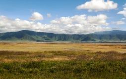 Tanzania meadows Stock Photos