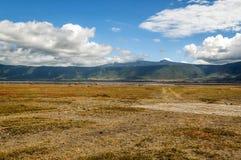 Tanzania meadows Royalty Free Stock Images