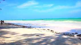 Tanzania strand stock video