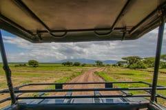 Tanzania - Tarangire National Park Royalty Free Stock Photo