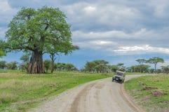 Tanzania - Tarangire National Park. A 4x4 station car driving on the gravel road through the landscape of Tarangire National Park in Tanzania Stock Images