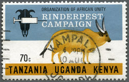 Free TANZANIA UGANDA KENYA - 1971: Shows Campaign Emblem And Cow, Series Rinderpest Campaign By The Organization For African Unity Royalty Free Stock Photos - 73330408