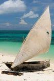 Tanzania, Zanzibar royalty-vrije stock afbeelding