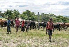 Tanzanian boys Royalty Free Stock Image