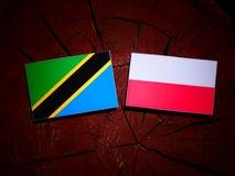 Tanzanian flag with Polish flag on a tree stump isolated. Tanzanian flag with Polish flag on a tree stump royalty free illustration