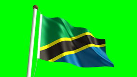 Tanzanian flag stock footage